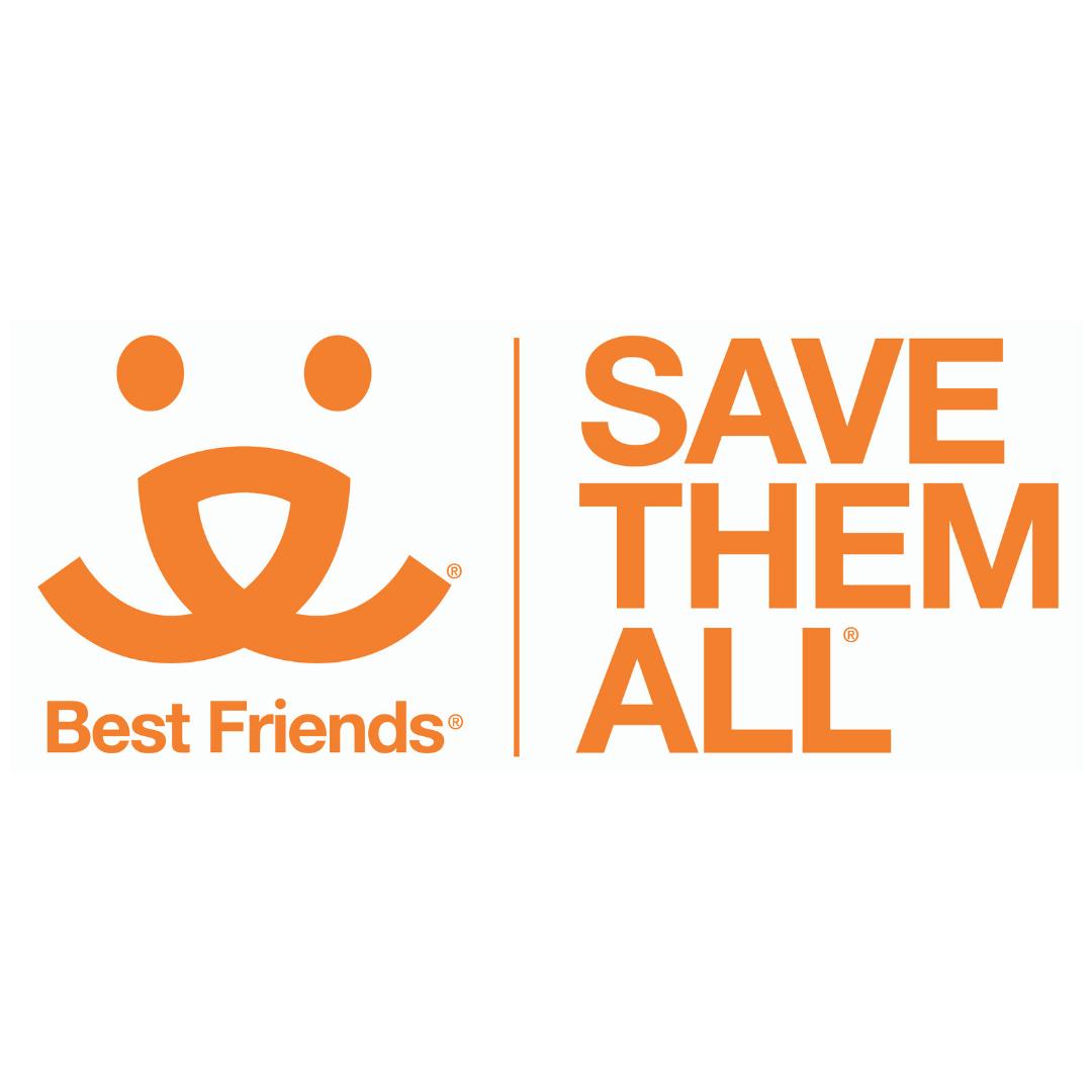 https://rescuedoggames.com/wp-content/uploads/2018/12/4.png