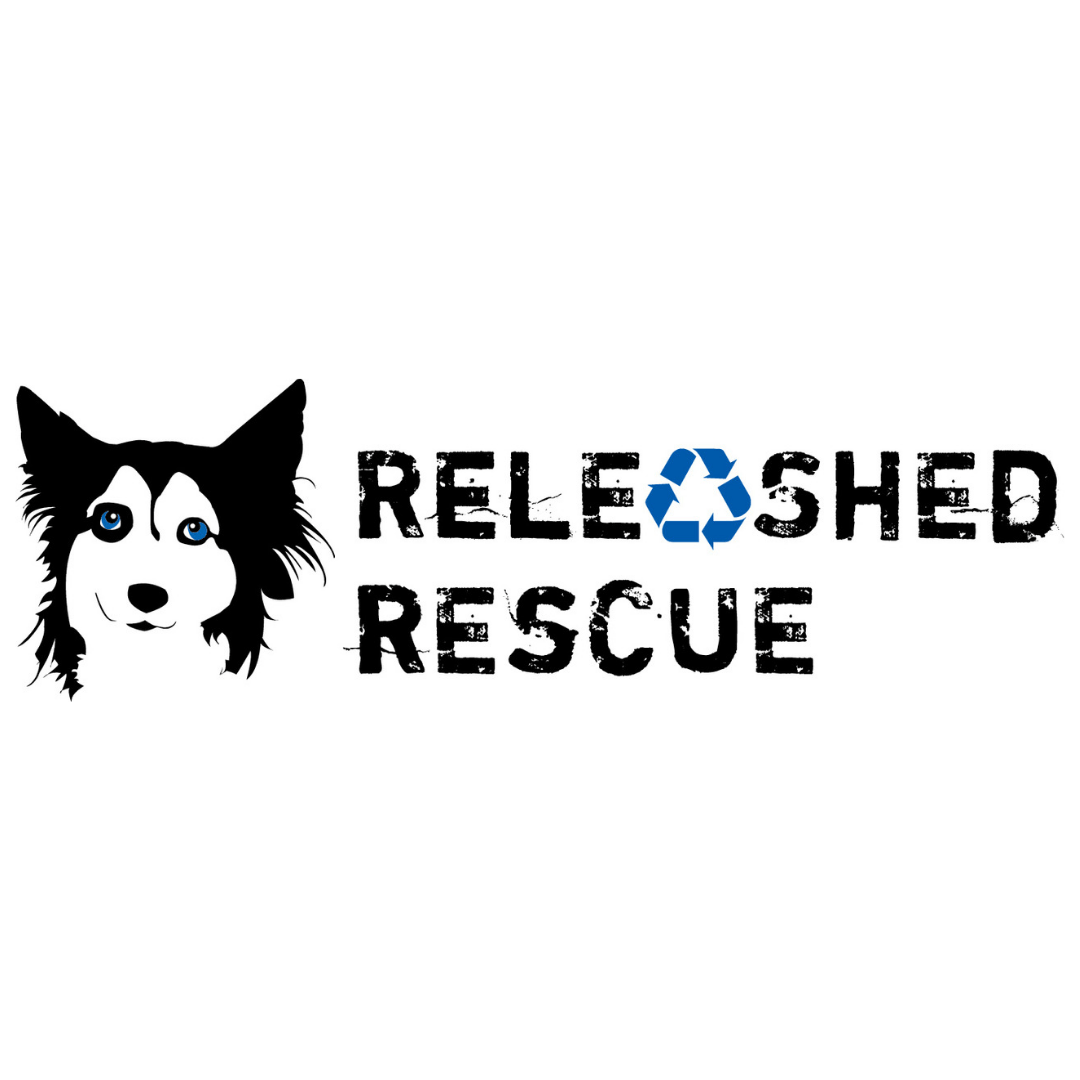 https://rescuedoggames.com/wp-content/uploads/2018/12/6.png