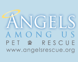 Angels Among Us Pet Fostering Logo