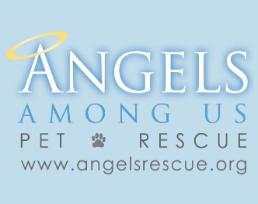 https://rescuedoggames.com/wp-content/uploads/2019/01/Angels-Among-Us-Pet-Fostering-Logo.png