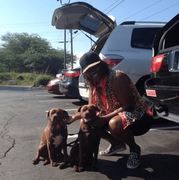 Domestic Abuse Survivor with two cute pittbull dogs