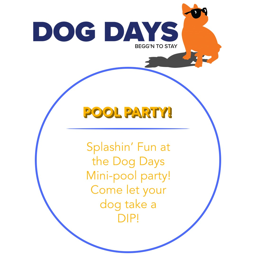https://rescuedoggames.com/wp-content/uploads/2019/01/Sponsors-dog-days.jpg
