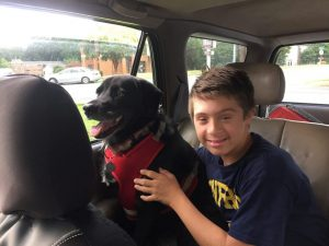 Gavin and Fritz in the car