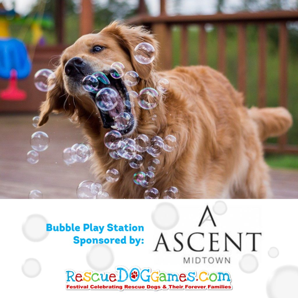 Ascent Midtown Bubble Play Station