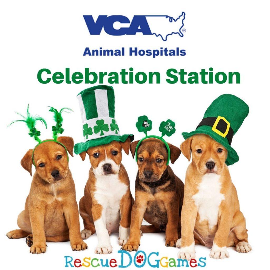 VCA Celebration Station