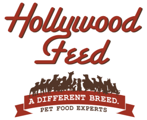 hollywood feed no background