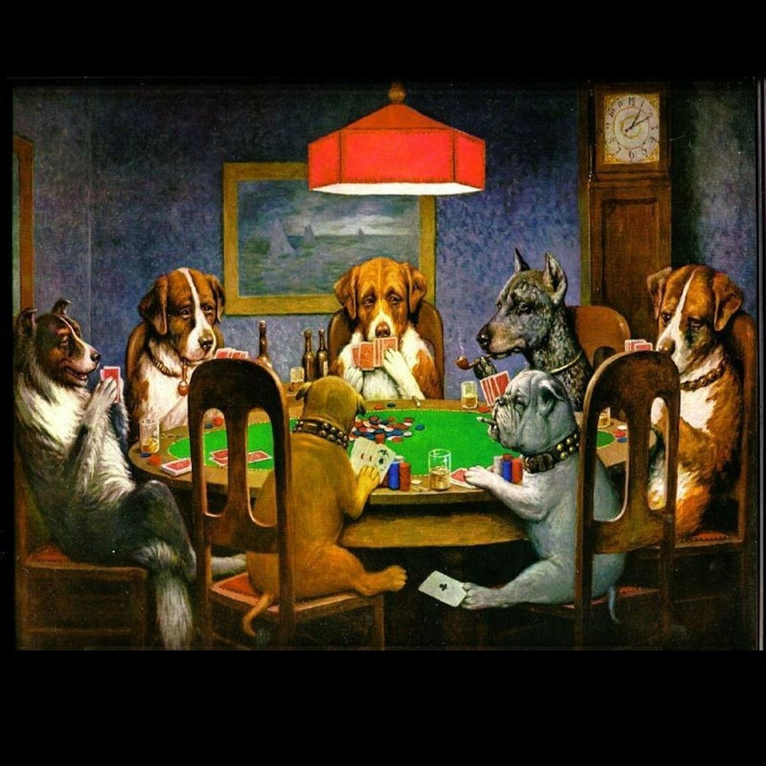 Wild-card-challenge-dogs-playing-poker
