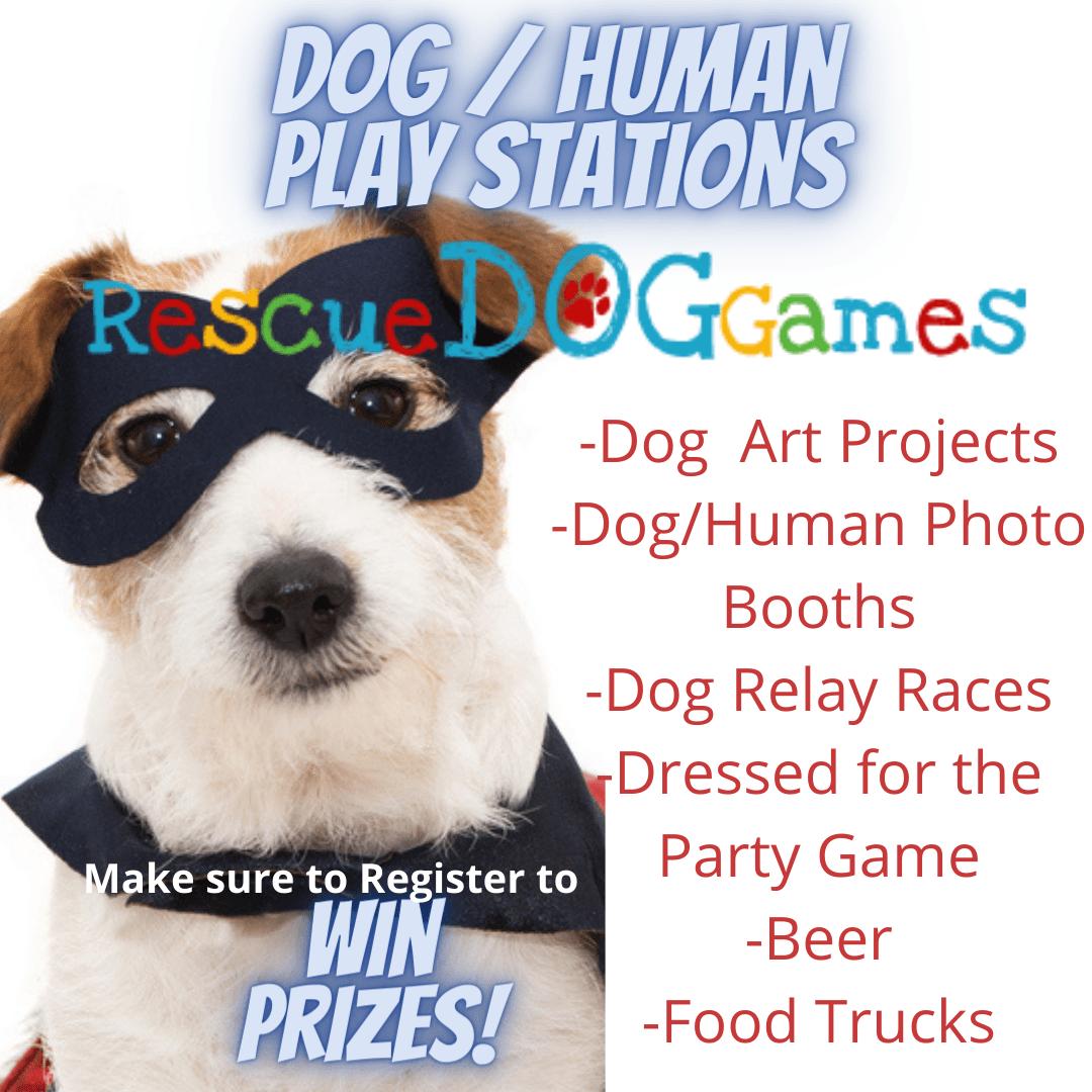 dog human play station post