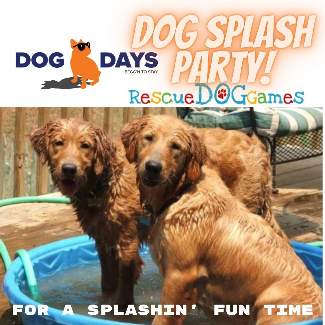post splash party