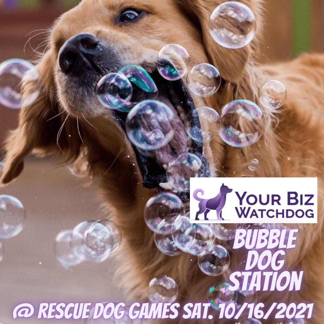 your biz watchdog bubble post