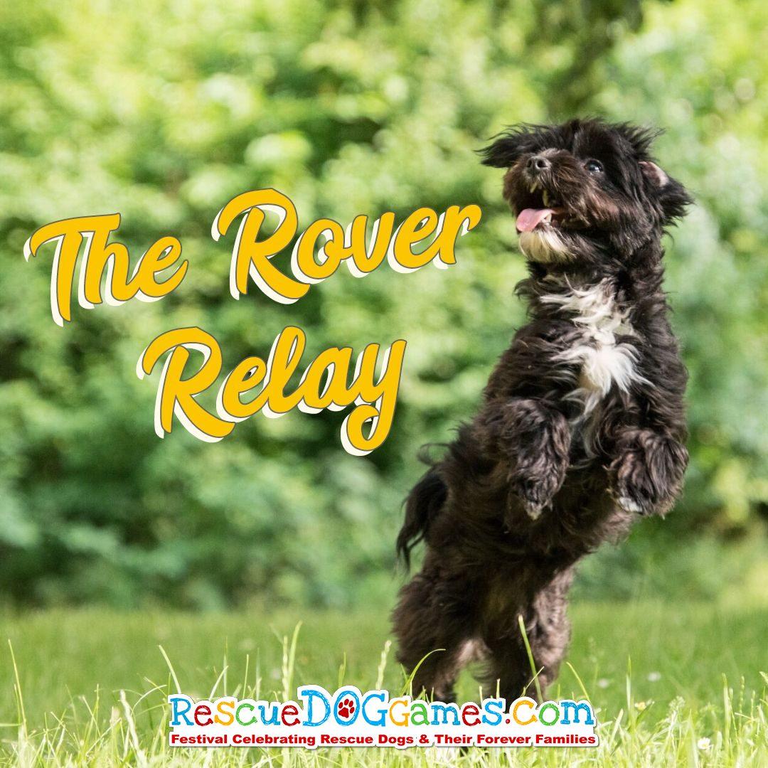 Rover-relay